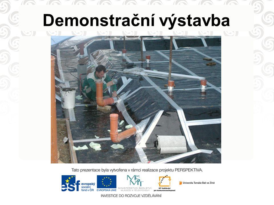 Demonstrační výstavba