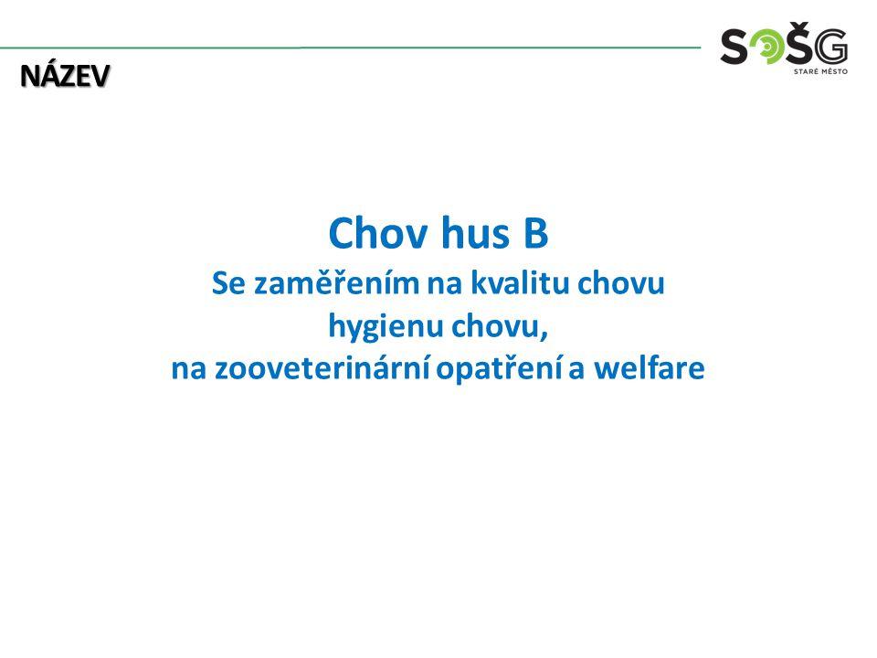Chov hus B Se zaměřením na kvalitu chovu hygienu chovu, na zooveterinární opatření a welfare NÁZEV