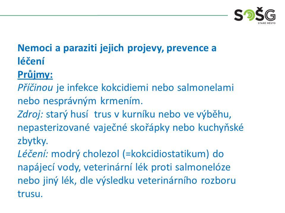 Nemoci a paraziti jejich projevy, prevence a léčení Průjmy: Příčinou je infekce kokcidiemi nebo salmonelami nebo nesprávným krmením. Zdroj: starý husí