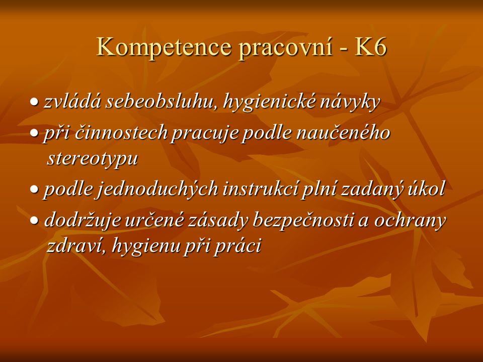Kompetence pracovní - K6  zvládá sebeobsluhu, hygienické návyky  při činnostech pracuje podle naučeného stereotypu  podle jednoduchých instrukcí pl