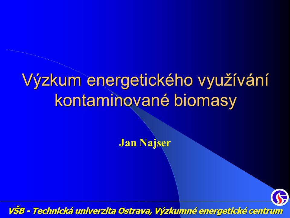 VŠB - Technická univerzita Ostrava, Výzkumné energetické centrum Výzkum energetického využívání kontaminované biomasy Jan Najser