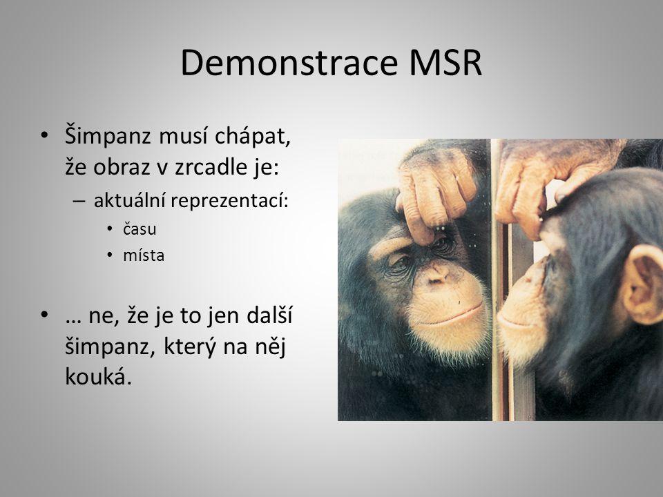 Demonstrace MSR Šimpanz musí chápat, že obraz v zrcadle je: – aktuální reprezentací: času místa … ne, že je to jen další šimpanz, který na něj kouká.
