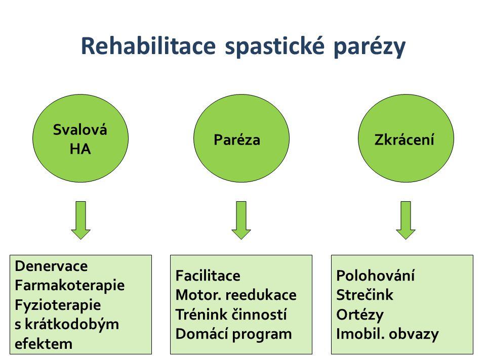 Svalová HA ParézaZkrácení Rehabilitace spastické parézy Denervace Farmakoterapie Fyzioterapie s krátkodobým efektem Facilitace Motor. reedukace Trénin