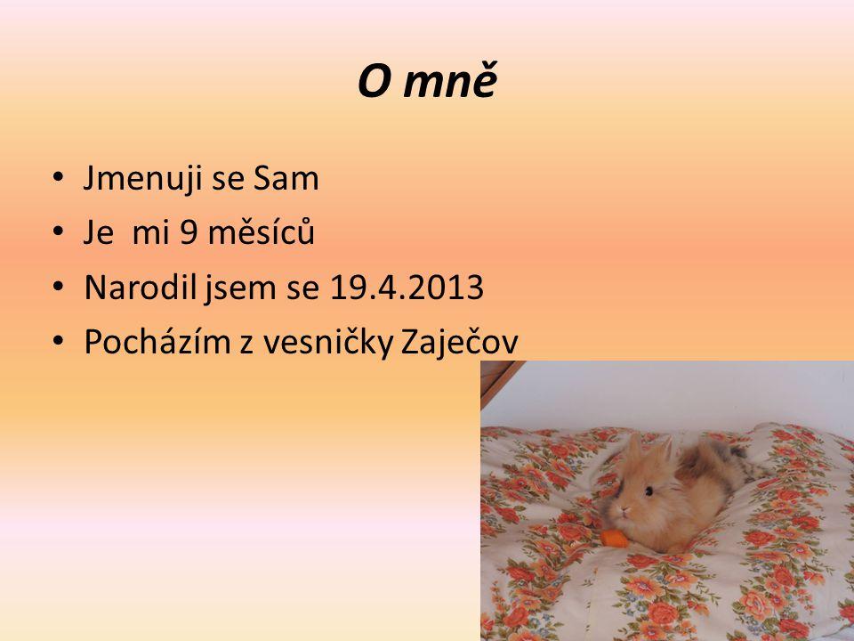O mně Jmenuji se Sam Je mi 9 měsíců Narodil jsem se 19.4.2013 Pocházím z vesničky Zaječov