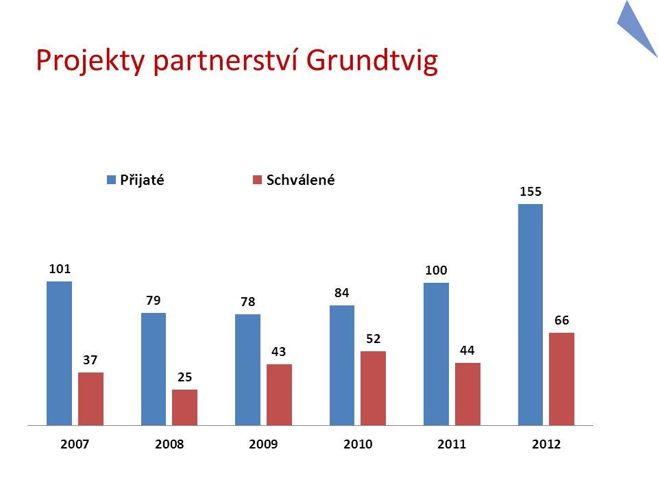 Projekty partnerství Grundtvig