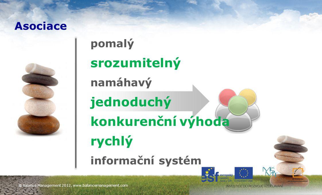 11 pomalý srozumitelný namáhavý jednoduchý rychlý informační systém konkurenční výhoda Asociace @ Balance Management 2012, www.balancemanagement.com