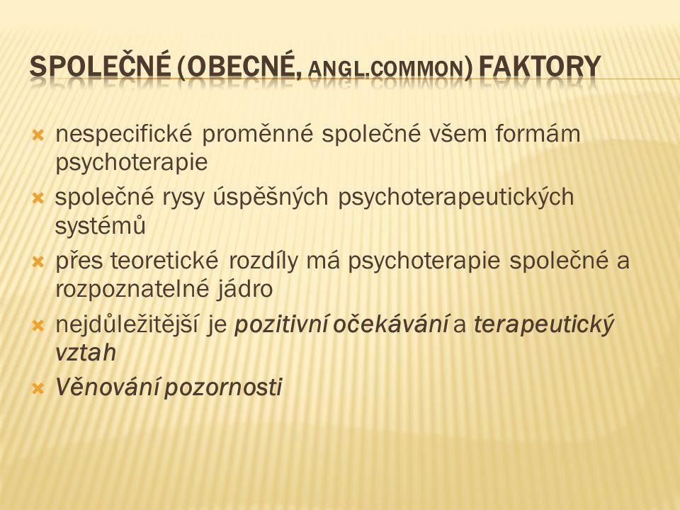  nespecifické proměnné společné všem formám psychoterapie  společné rysy úspěšných psychoterapeutických systémů  přes teoretické rozdíly má psychot