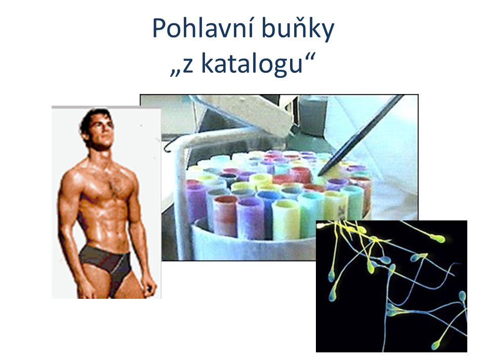 """Pohlavní buňky """"z katalogu"""""""