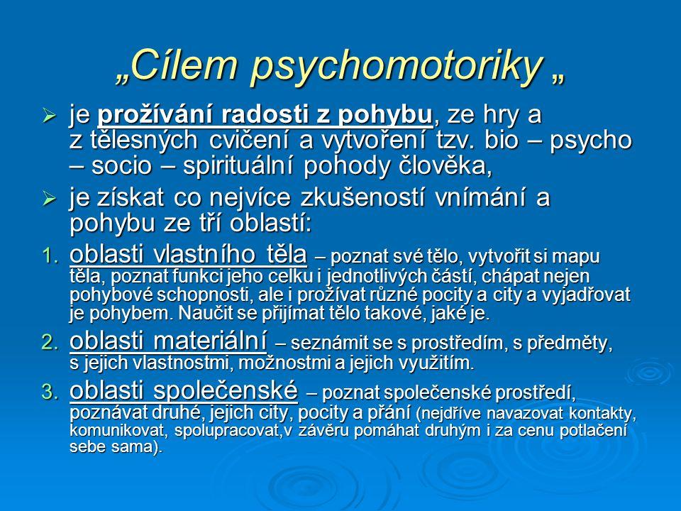 Psychomotorika jako výchova pohybem spolupracuje s :  pedagogikou,  psychologií (kladně ovlivňuje emocionální stránku osobnosti),  sociologií (zasahuje do interakce jedince s kolektivem, vede ke spolupráci, komunikaci, kontaktu),  fyziologií (posiluje fyzickou zdatnosti),  etikou (učí odpovědnosti za druhého, poctivosti při hře a pomoci),  estetikou (napomáhá k vnímání krásy pohybu).