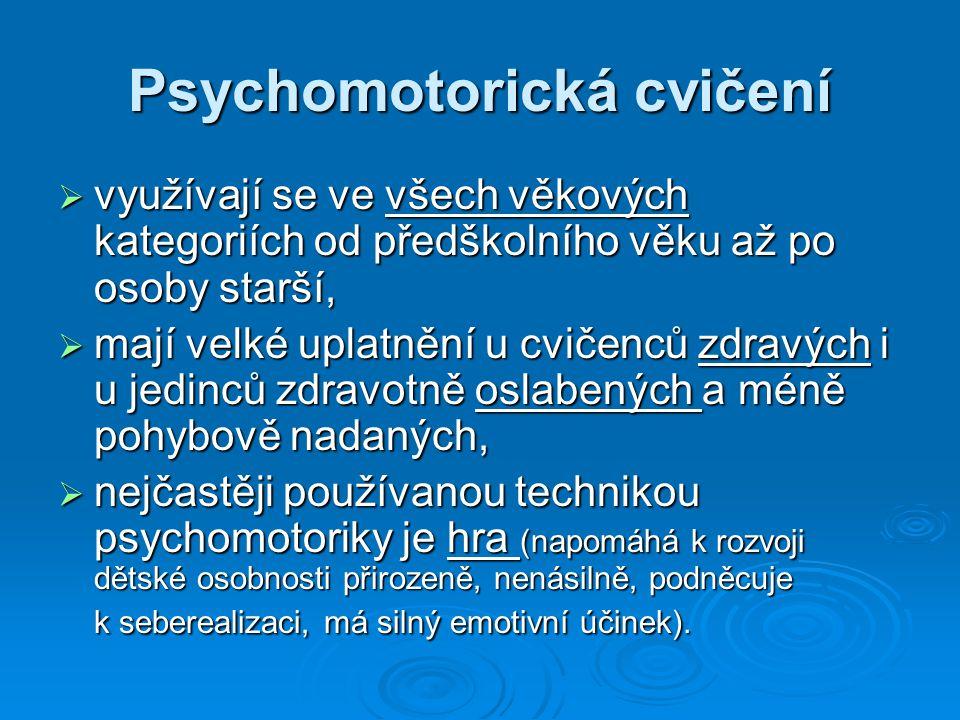 Běžně využívané pomůcky při psychomotorických hrách:  vozíky,  šátky, švihadla,  tyče, kelímky,  míče, nafukovací balónky,  šlapadla, chůdy,  velká plachta a padák  PET vršky, štěrchadla,  koberečky, deky, noviny,  cyber válec - novinkou mezi psychomotorickými pomůckami.