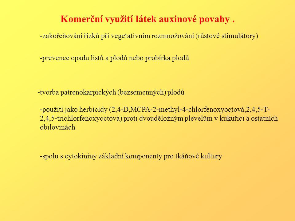 Komerční využití látek auxinové povahy.