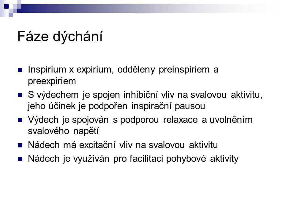 Fáze dýchání Inspirium x expirium, odděleny preinspiriem a preexpiriem S výdechem je spojen inhibiční vliv na svalovou aktivitu, jeho účinek je podpoř