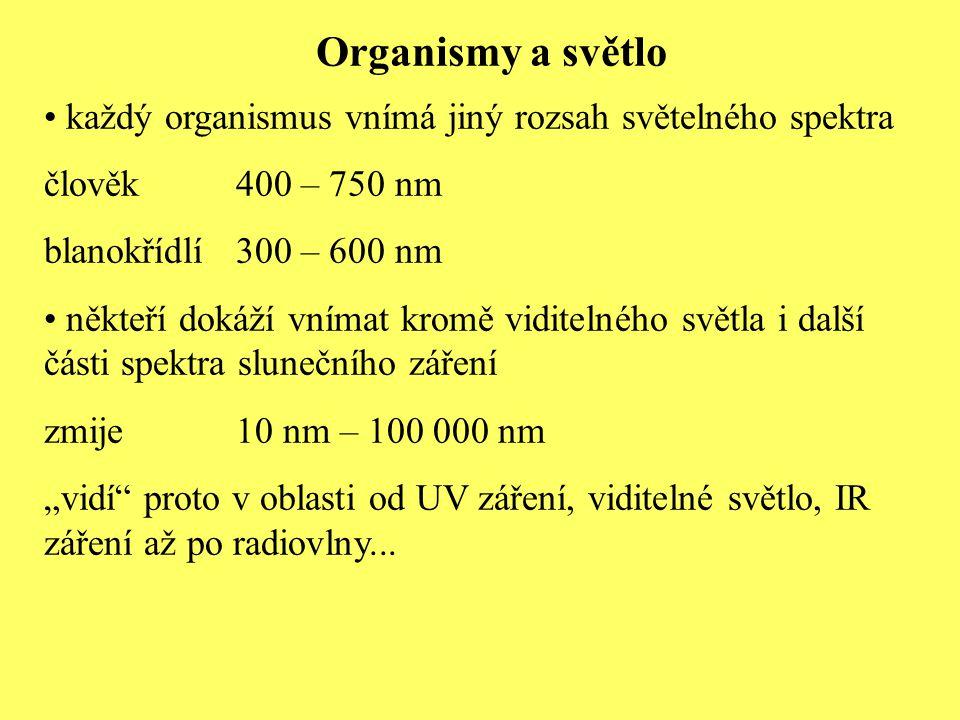 """Organismy a světlo každý organismus vnímá jiný rozsah světelného spektra člověk400 – 750 nm blanokřídlí300 – 600 nm někteří dokáží vnímat kromě viditelného světla i další části spektra slunečního záření zmije10 nm – 100 000 nm """"vidí proto v oblasti od UV záření, viditelné světlo, IR záření až po radiovlny..."""