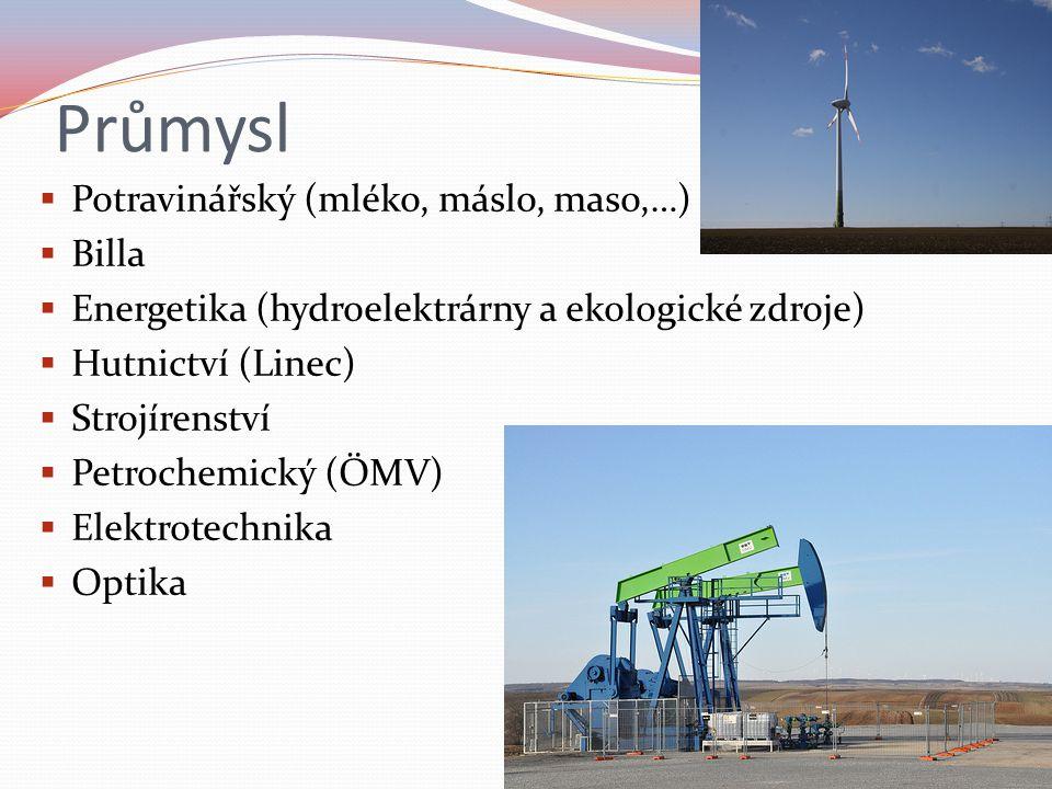 Průmysl  Potravinářský (mléko, máslo, maso,…)  Billa  Energetika (hydroelektrárny a ekologické zdroje)  Hutnictví (Linec)  Strojírenství  Petrochemický (ÖMV)  Elektrotechnika  Optika