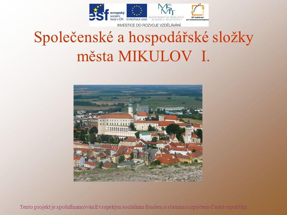 Společenské a hospodářské složky města MIKULOV I.