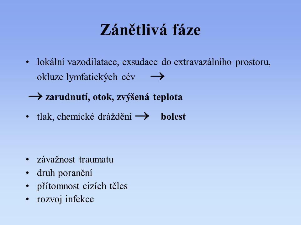 Zánětlivá fáze lokální vazodilatace, exsudace do extravazálního prostoru, okluze lymfatických cév   zarudnutí, otok, zvýšená teplota tlak, chemické
