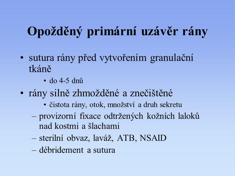 Opožděný primární uzávěr rány sutura rány před vytvořením granulační tkáně do 4-5 dnů rány silně zhmožděné a znečištěné čistota rány, otok, množství a