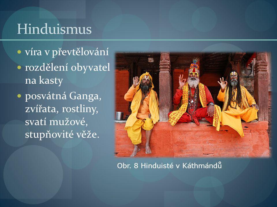 Hinduismus víra v převtělování rozdělení obyvatel na kasty posvátná Ganga, zvířata, rostliny, svatí mužové, stupňovité věže.