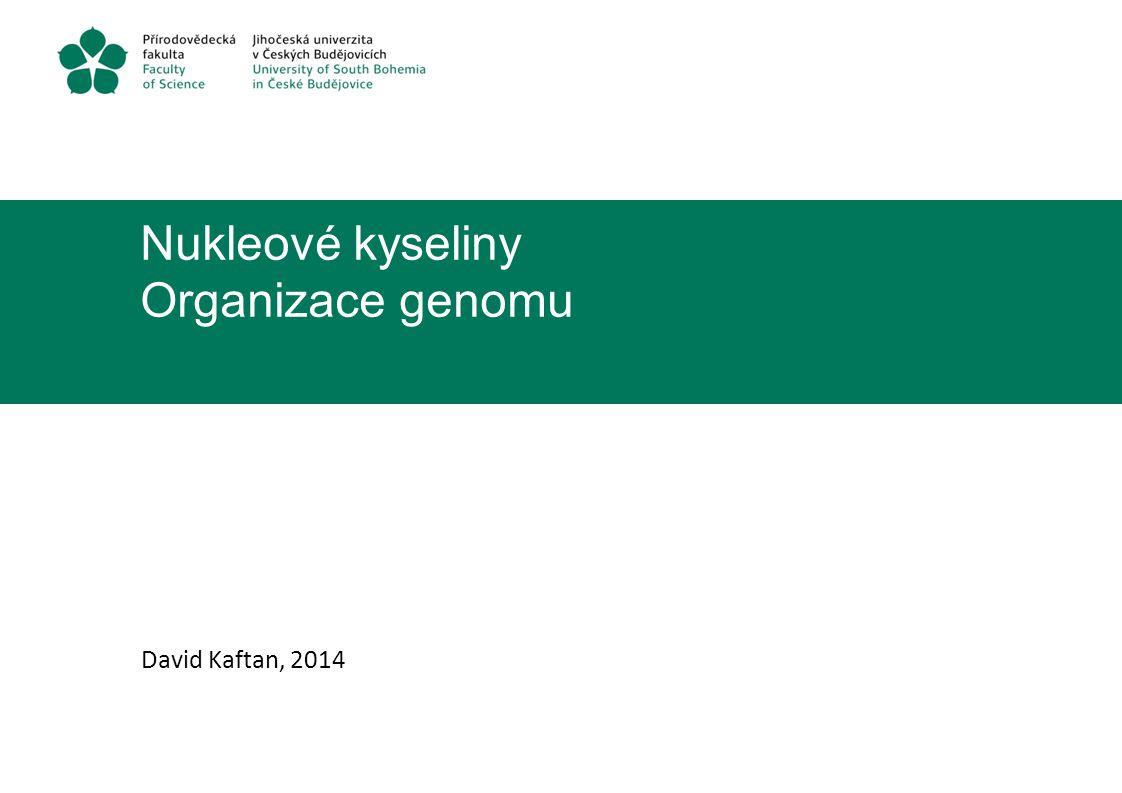 Nukleové kyseliny Organizace genomu David Kaftan, 2014