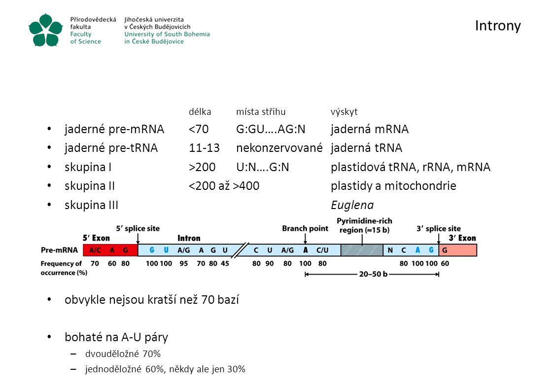 Introny délkamísta střihuvýskyt jaderné pre-mRNA<70G:GU….AG:Njaderná mRNA jaderné pre-tRNA11-13nekonzervovanéjaderná tRNA skupina I>200U:N….G:Nplastid