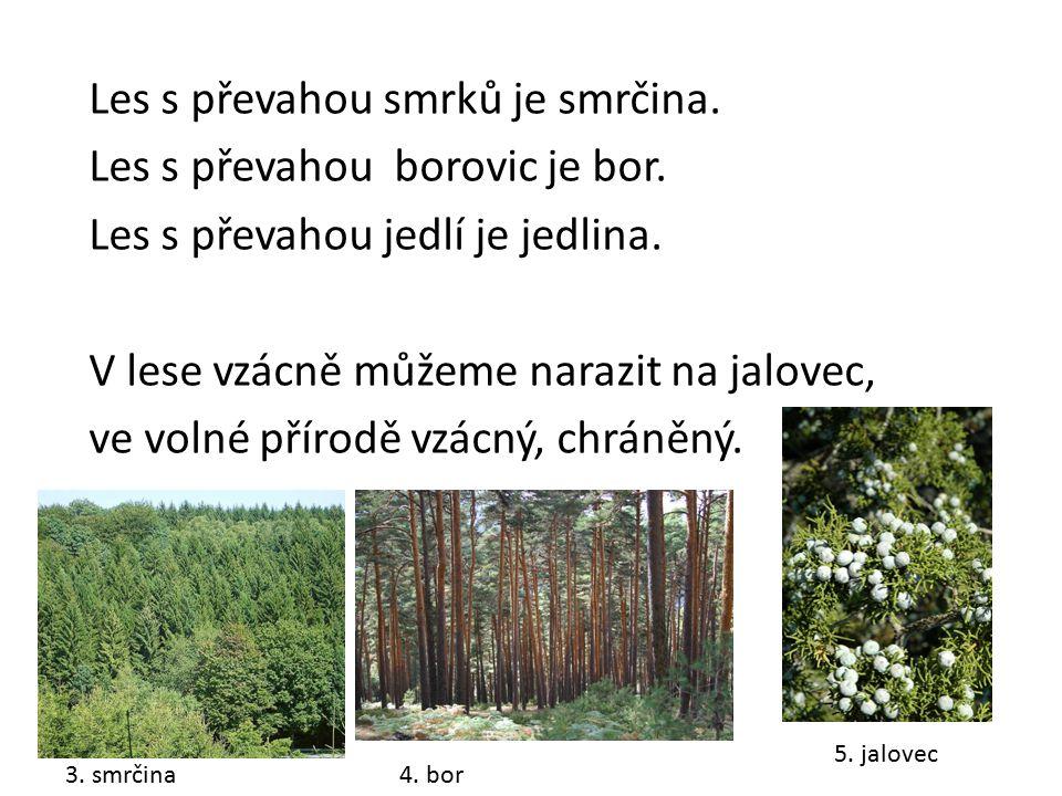 Les s převahou smrků je smrčina. Les s převahou borovic je bor. Les s převahou jedlí je jedlina. V lese vzácně můžeme narazit na jalovec, ve volné pří