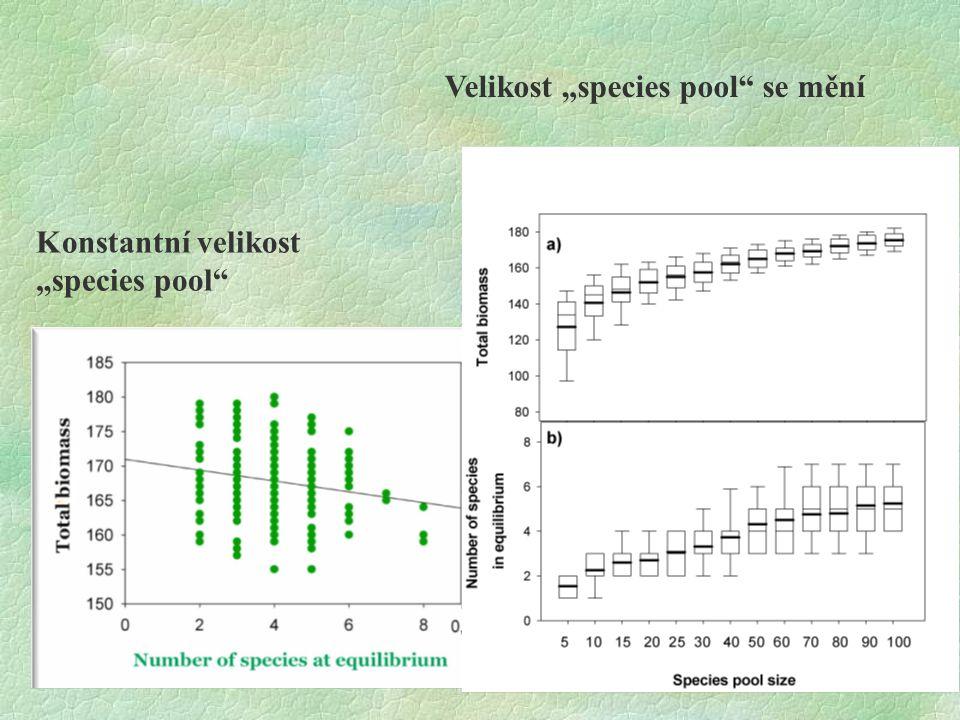 """Konstantní velikost """"species pool"""" Velikost """"species pool"""" se mění"""