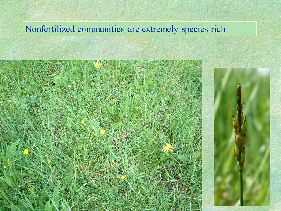 Fertilised communities are less species rich
