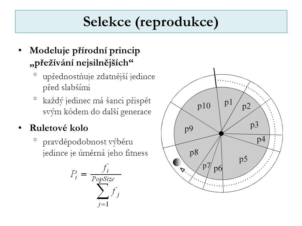 """Selekce (reprodukce) Modeluje přírodní princip """"přežívání nejsilnějších  upřednostňuje zdatnější jedince před slabšími  každý jedinec má šanci přispět svým kódem do další generace Ruletové kolo  pravděpodobnost výběru jedince je úměrná jeho fitness"""