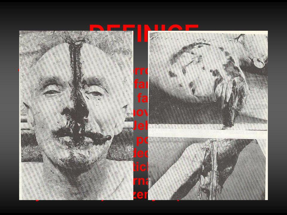 DEFINICE Horror (z angl. horror – hrůza, zděšení) je umělecký žánr fantastické literatury, který na rozdíl od fantasy a science fiction nelze definova