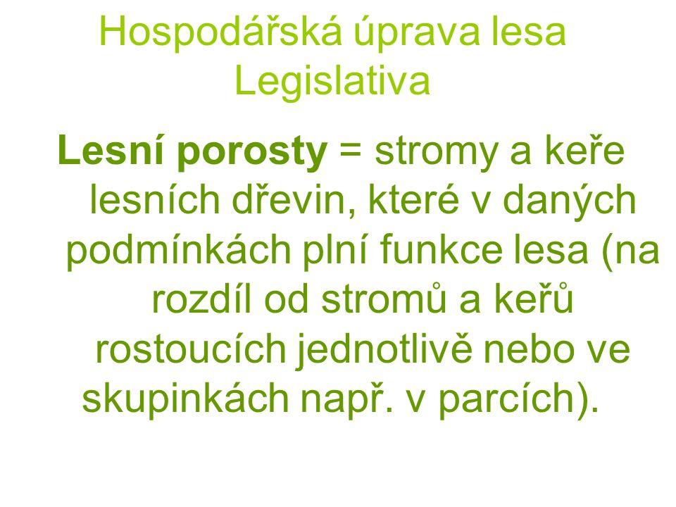 Hospodářská úprava lesa Legislativa Lesní porosty = stromy a keře lesních dřevin, které v daných podmínkách plní funkce lesa (na rozdíl od stromů a ke