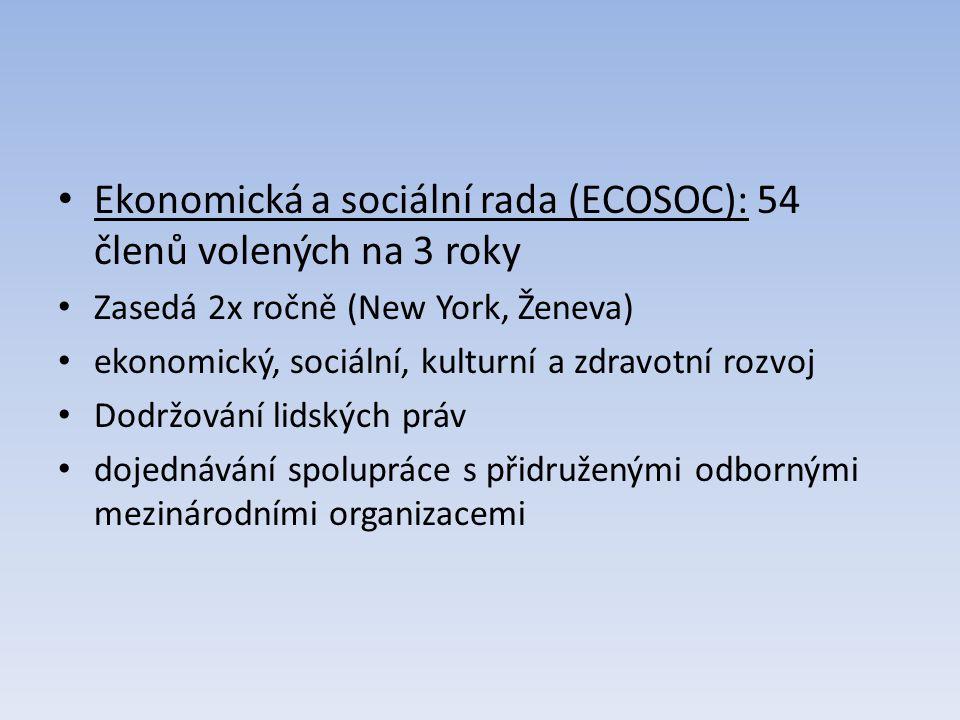 Ekonomická a sociální rada (ECOSOC): 54 členů volených na 3 roky Zasedá 2x ročně (New York, Ženeva) ekonomický, sociální, kulturní a zdravotní rozvoj Dodržování lidských práv dojednávání spolupráce s přidruženými odbornými mezinárodními organizacemi