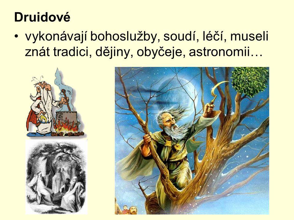 Druidové vykonávají bohoslužby, soudí, léčí, museli znát tradici, dějiny, obyčeje, astronomii…