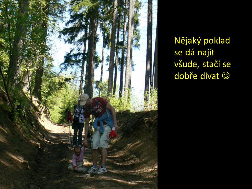 Prasátka (16 km)