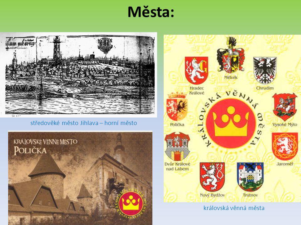 b)poddanská: -zakládala je šlechta -obyvatelé byli poddanými -bylo jich méně poddanské město Děčín Slavonice byly poddanským městem poddanské město a středověký hrad v Trutnově