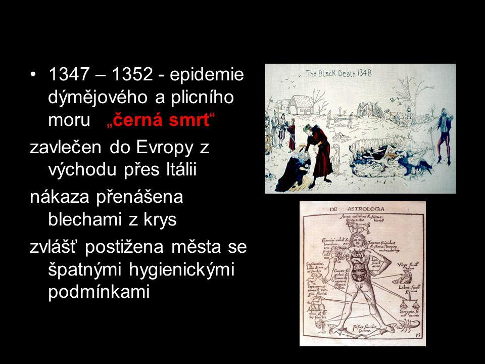 """Průměrná délka života 12. -13. století 35 let 1347 – 1352 - epidemie dýmějového a plicního moru """"černá smrt"""" zavlečen do Evropy z východu přes Itálii"""