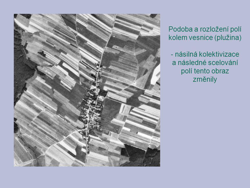 Podoba a rozložení polí kolem vesnice (plužina) - násilná kolektivizace a následné scelování polí tento obraz změnily