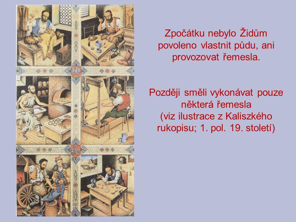 Zpočátku nebylo Židům povoleno vlastnit půdu, ani provozovat řemesla. Později směli vykonávat pouze některá řemesla (viz ilustrace z Kaliszkého rukopi