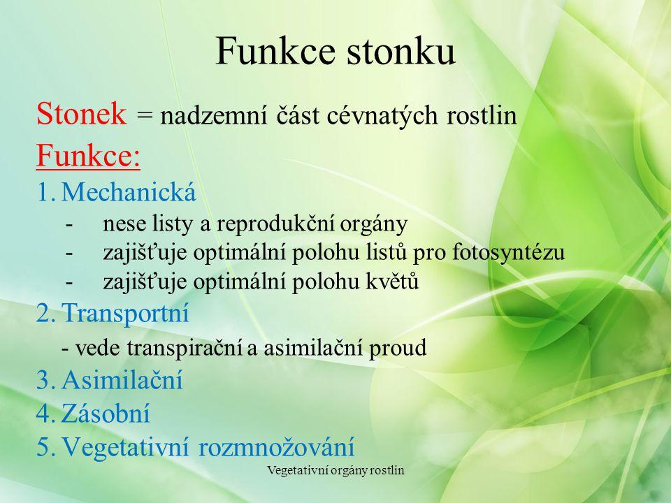 Funkce stonku Stonek = nadzemní část cévnatých rostlin Funkce: 1.Mechanická -nese listy a reprodukční orgány -zajišťuje optimální polohu listů pro fot