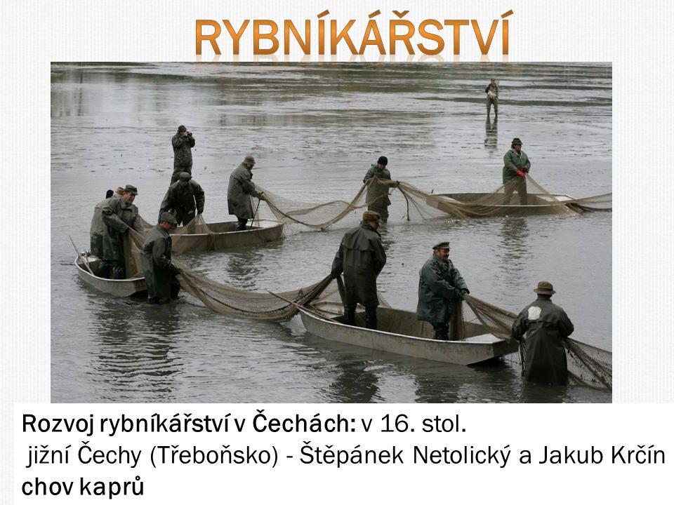 Rozvoj rybníkářství v Čechách: v 16.stol.