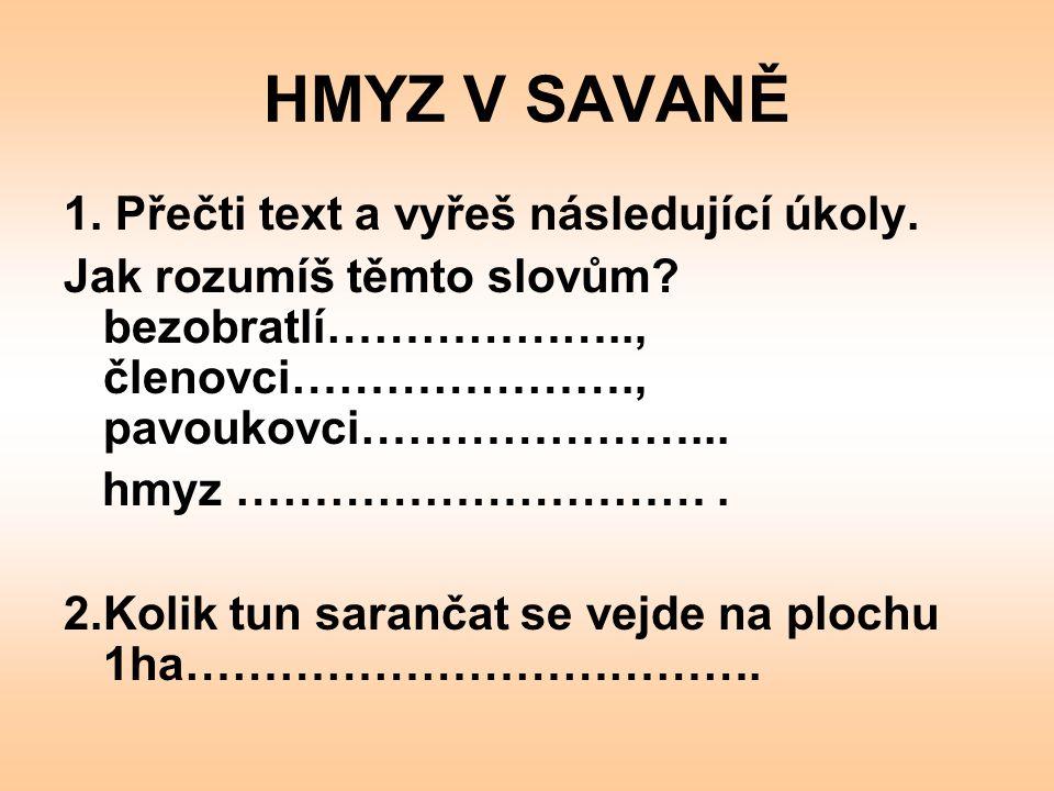 HMYZ V SAVANĚ 3.