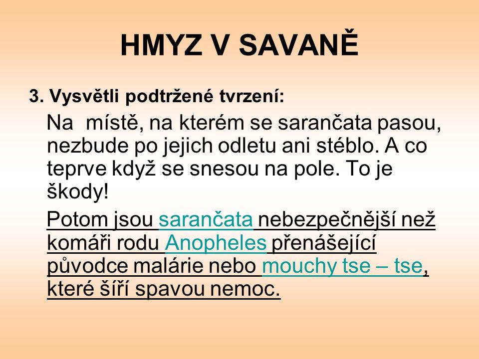 HMYZ V SAVANĚ 2.