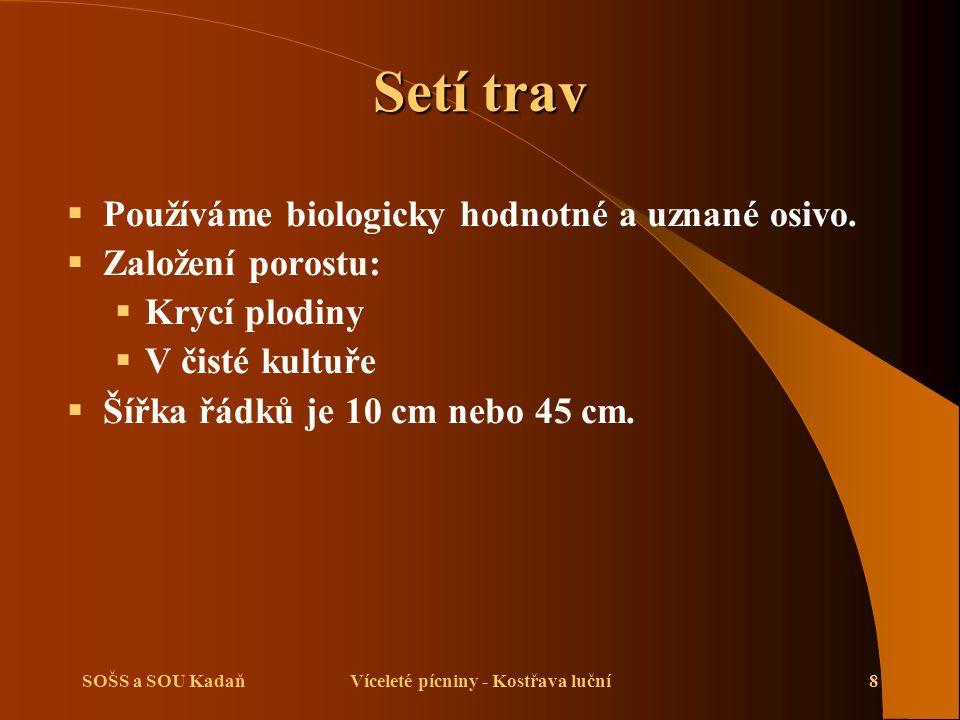 SOŠS a SOU KadaňVíceleté pícniny - Kostřava luční8 Setí trav  Používáme biologicky hodnotné a uznané osivo.  Založení porostu:  Krycí plodiny  V č
