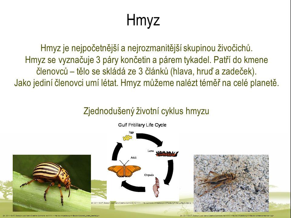 Hmyz Hmyz je nejpočetnější a nejrozmanitější skupinou živočichů.