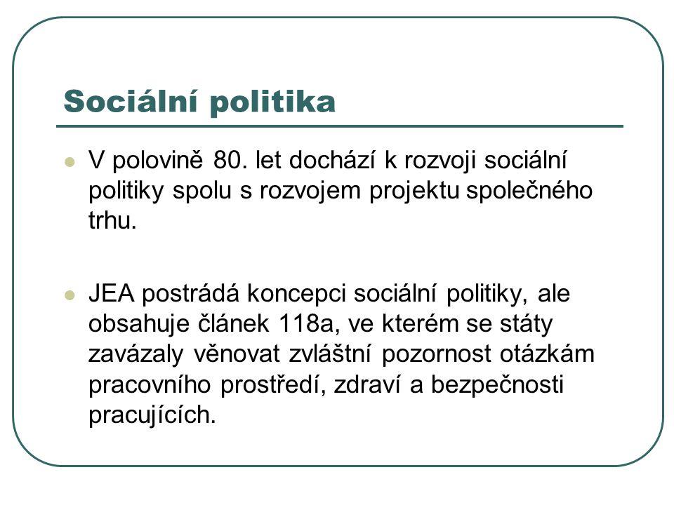 Sociální politika V polovině 80. let dochází k rozvoji sociální politiky spolu s rozvojem projektu společného trhu. JEA postrádá koncepci sociální pol