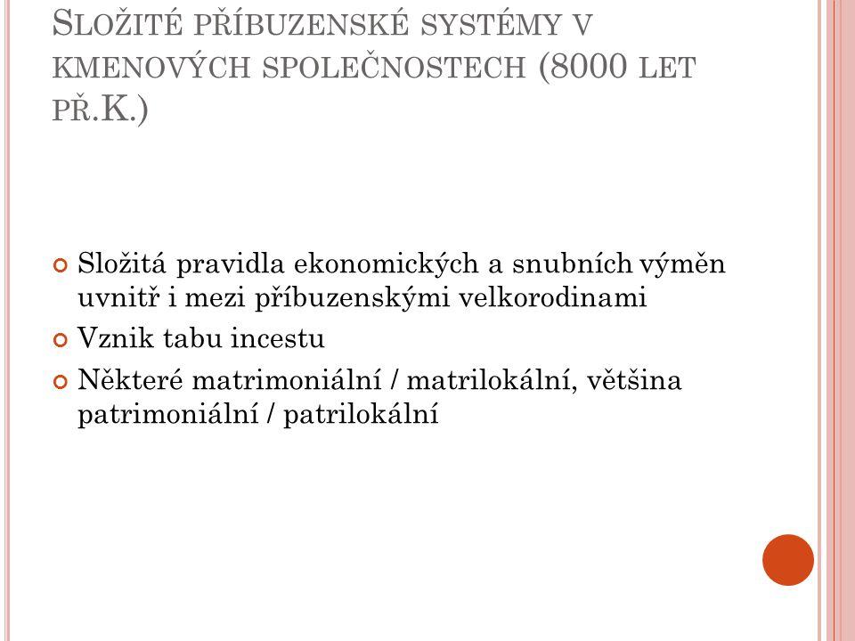 Ú PADEK SLOŽITÝCH SYSTÉMŮ, POČÁTEK PATRIMONIÁLNÍ DOMÁCNOSTI (3000 LET PŘ.K.