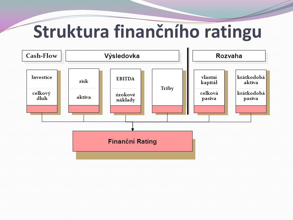 Finanční Rating Tržby krátkodobá aktiva krátkodobá pasiva EBITDA úrokové náklady zisk aktiva Investice celkový dluh Výsledovka Rozvaha vlastní kapitál