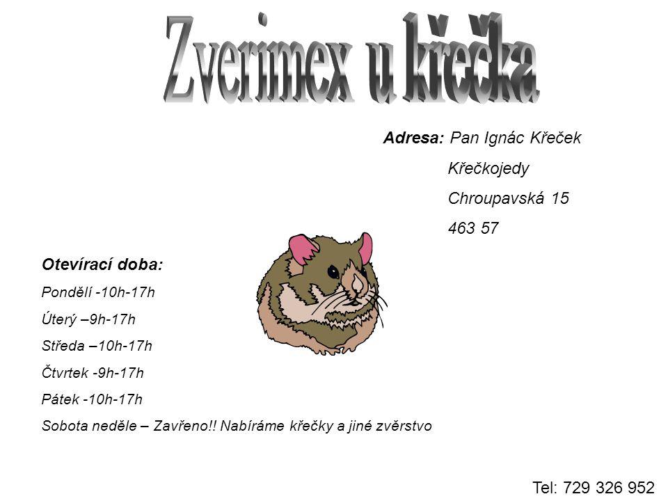 Náš zverimex je druhým domovem pro všechny zvířátka, ale samozřejmě se jich rádi zbavíme.