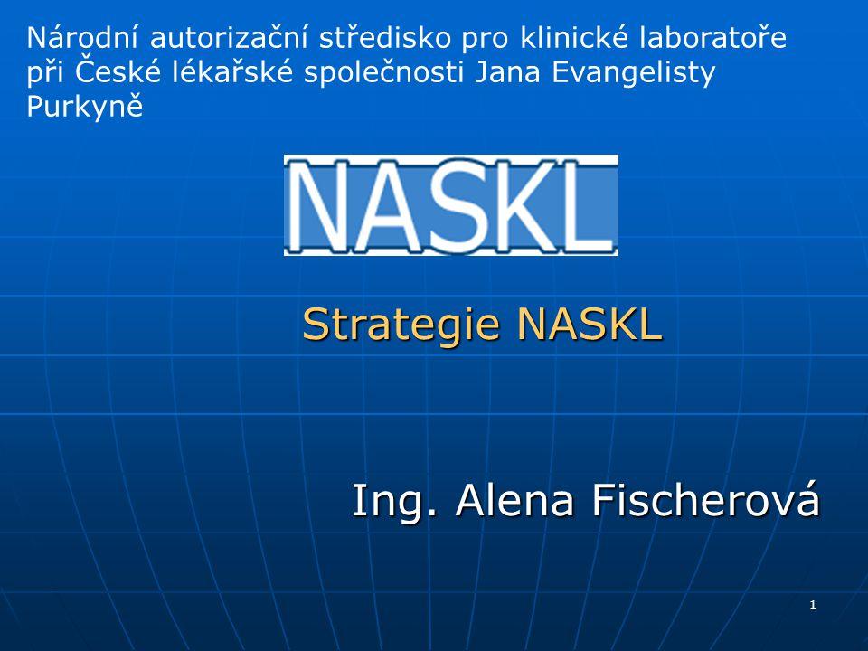 1 Strategie NASKL Ing.
