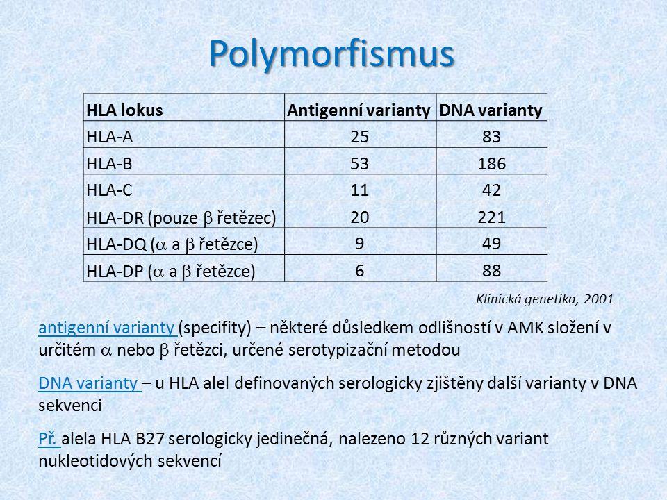 Nomenklatura HLA systému HLA A*0101 lokusserologická specifita specifická alela určená sekvenací nukleotidů Př.