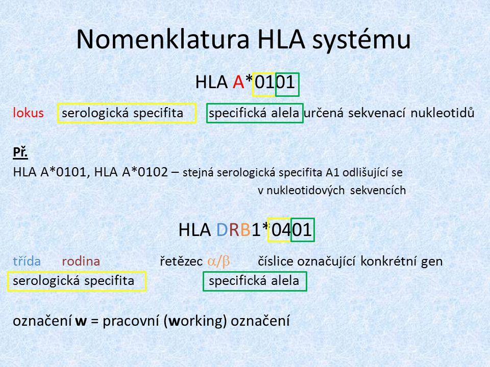 obrovský počet polymorfismů (ne všechny!) příčinou variability ve struktuře povrchových HLA proteinů HLA alely přenášeny společně jako haplotypy každý rodič má 2 exprimované haplotypy dítěti předá jeden nebo druhý → existuje 25% šance, že dva sourozenci zdědí stejný haplotyp od jednoho z rodičů AB + CD → AC / AD / BC / BD značná variabilita v profilu a frekvenci HLA variant např.